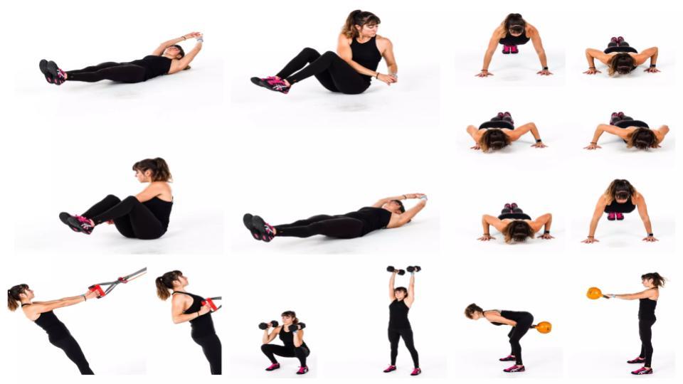 daily tactics guru-best way to loose weight