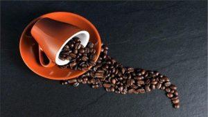daily tactics guru-Coffee Beans